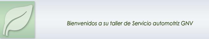 Taller de Servicio Automotriz GNV